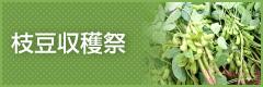 枝豆収穫祭