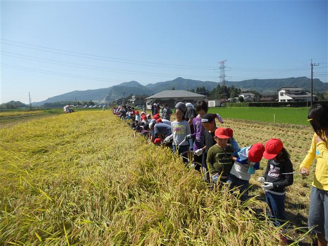 君津市農業協同組合代表理事組合長賞「みんなで刈るよっ!」 天野純平