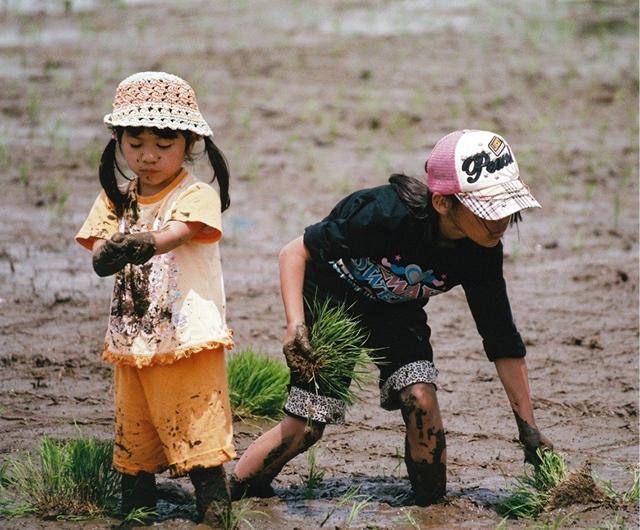 千葉県君津農業事務所長賞 「どろんこ!」 君津市 野沢満夫