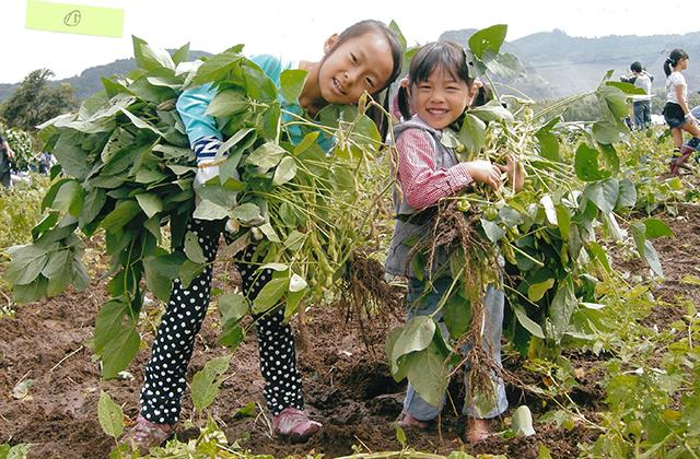 千葉県君津農業事務所長賞 「たくさん枝豆とれたよー!」 富津市 大塚昌子