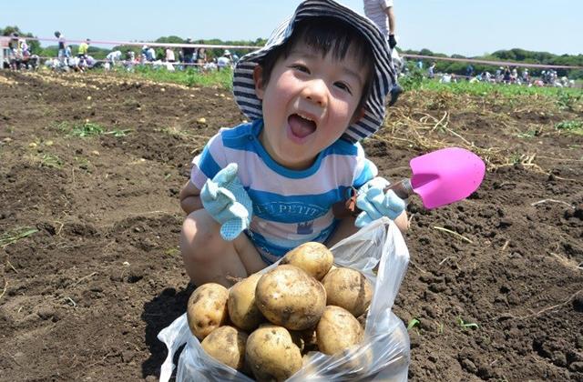 君津市認定農業者協議会長賞 「じゃがいもたくさん掘れたよ!」 川崎市 大垣内暖人